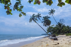 GuineaEcuatorialBasiléTravel-43