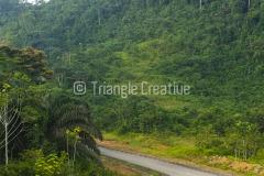 GuineaEcuatorialBasiléTravel-57